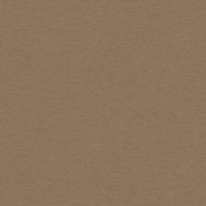 306892 – טפט מרקם טקסטורה קלאסי