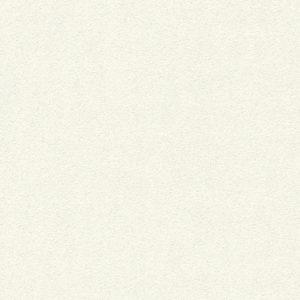 361681- טפט טקסטורה מרקם