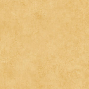 373701- טפט מרקם ווש